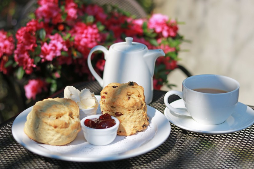 Some of Our Favourite Local CreamTeas!