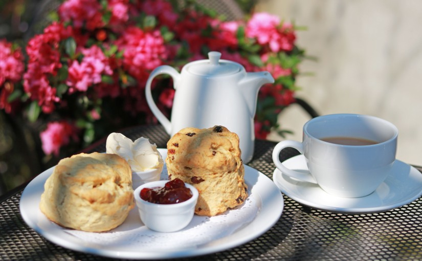Some of Our Favourite Local Cream Teas!